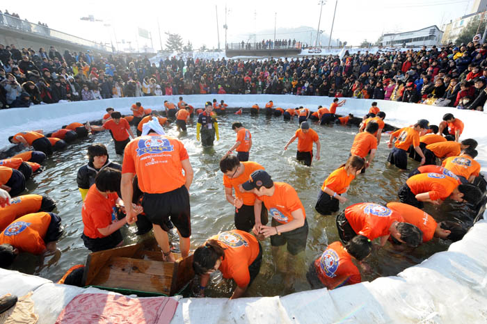 At the Hwacheon Sancheoneo (Mountain Trout) Ice Festival, people can capture fish with their bare hands (photo: Yonhap News).